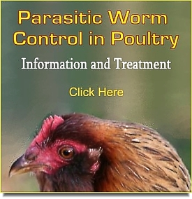 Poultry Worming