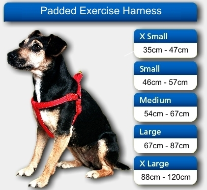 Dog harness by ancol new in dh2-street for £5. 00 for sale | shpock.