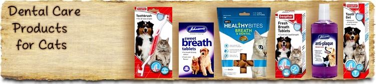 Cat Dental Care Products - Buy Online SPR Centre UK