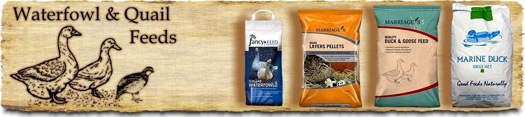Waterfowl and Quail Feeds Feeds - Buy Online SPR Centre UK