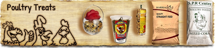 Poultry Treats and Snacks - Buy Online SPR Centre UK